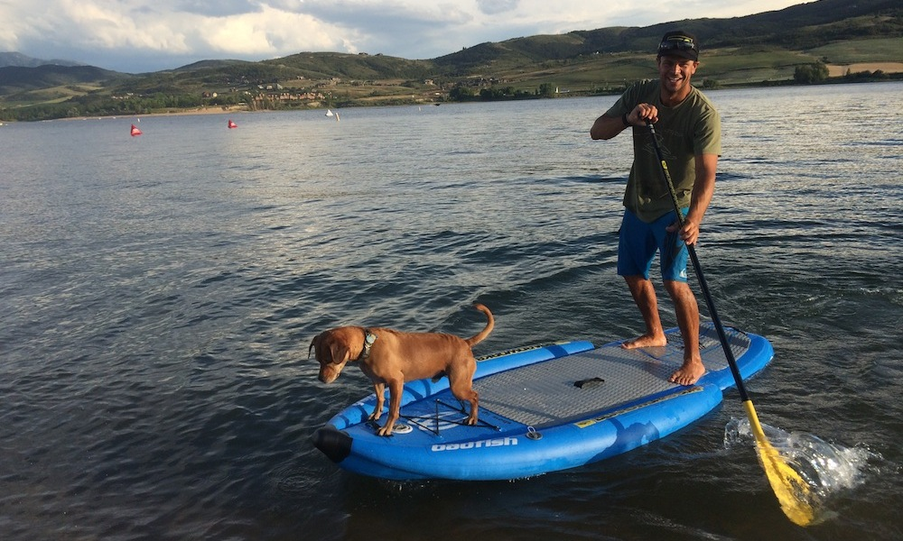 how-to-keep-your-dog-safe-when-paddle-boarding-9