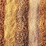 О здоровье: 5 действительно полезных семян