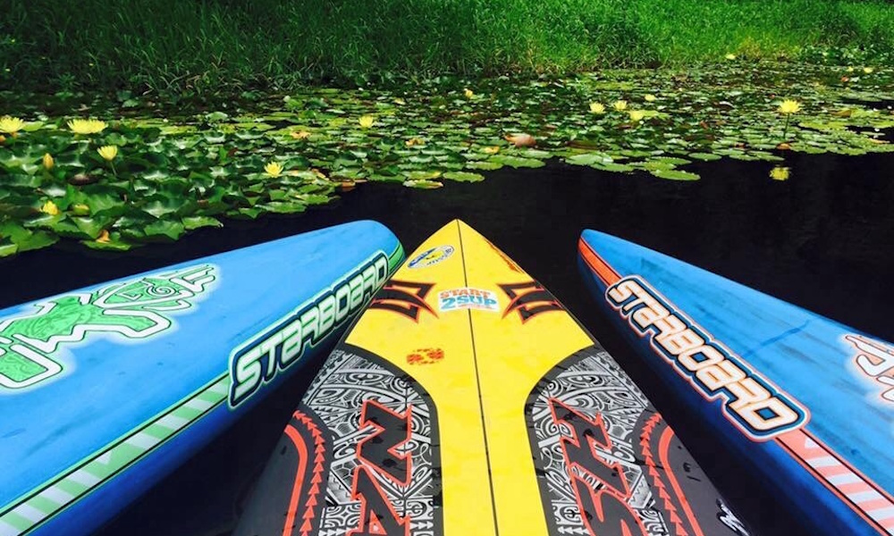how-to-choose-sup