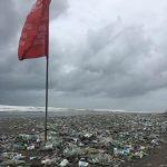 Сообщество Clean Ocean Day за чистоту океана