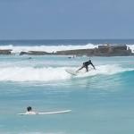 SUP-серфинг в Раю: Барбадос