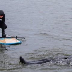paddle-boarding-among-icebergs-lake-michigan-1