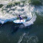 Сапсерфинг по речным волнам