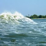 SUP – остров свободы. Бродяги Дхармы в Гоа