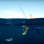 Рыбалка на Черном море: купаемся и ловим ставриду на SUP
